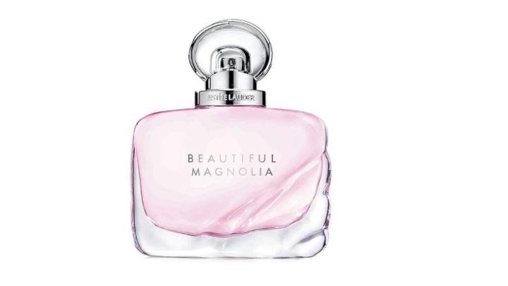 Beautiful-Magnolia